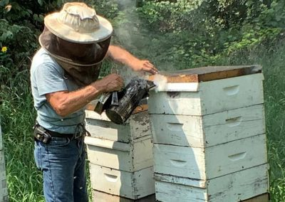 Removing bees from honey supers