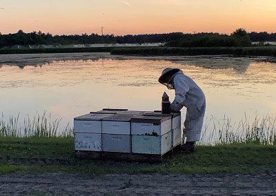 Straightening hives