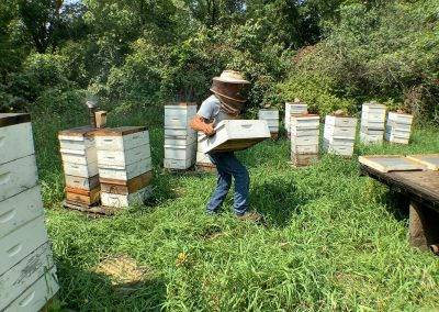 Removing filled honey supers from hives
