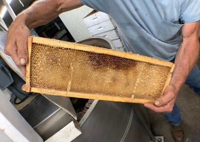 Uncapped honey frame